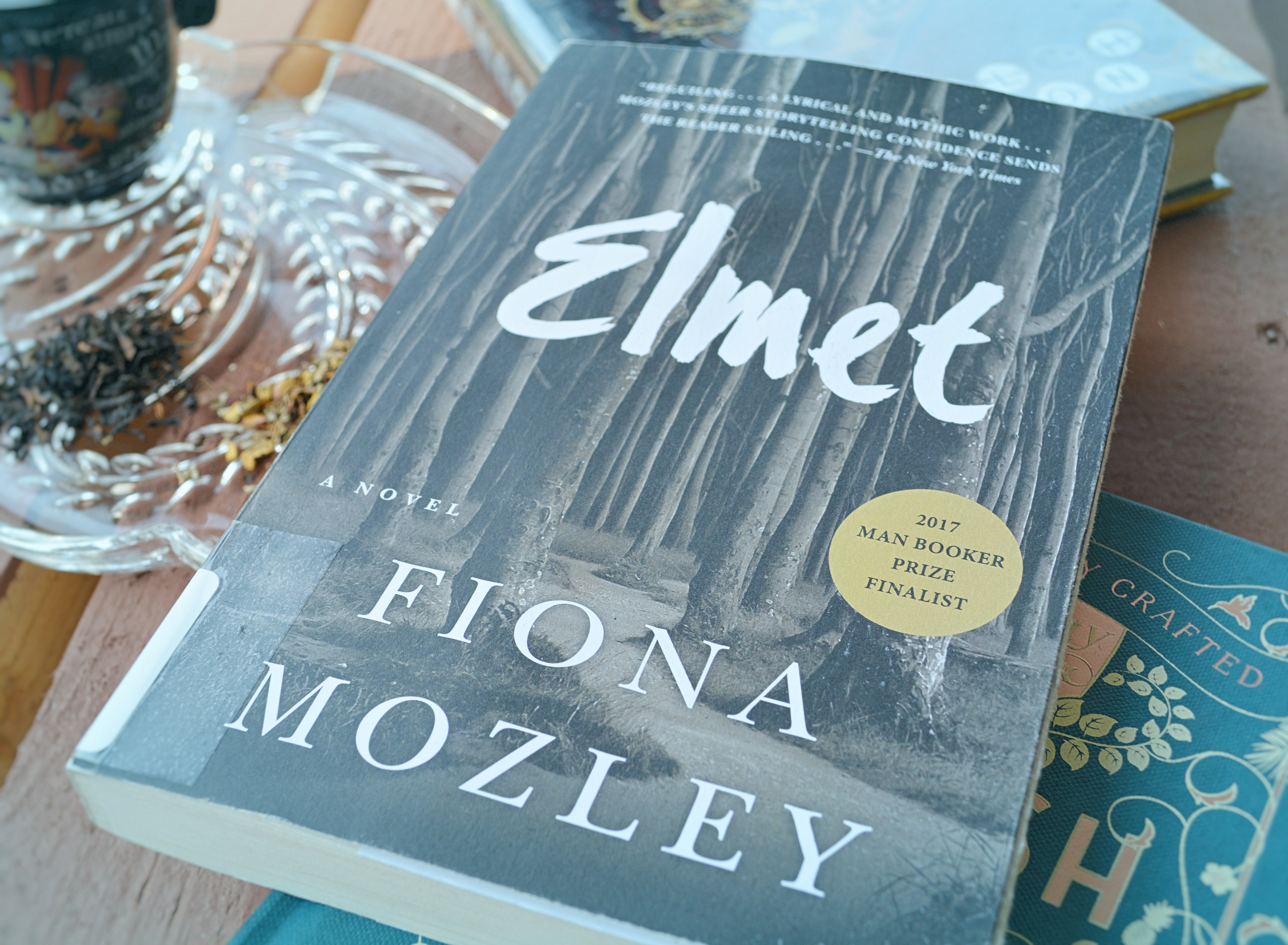 Elmet Book Review